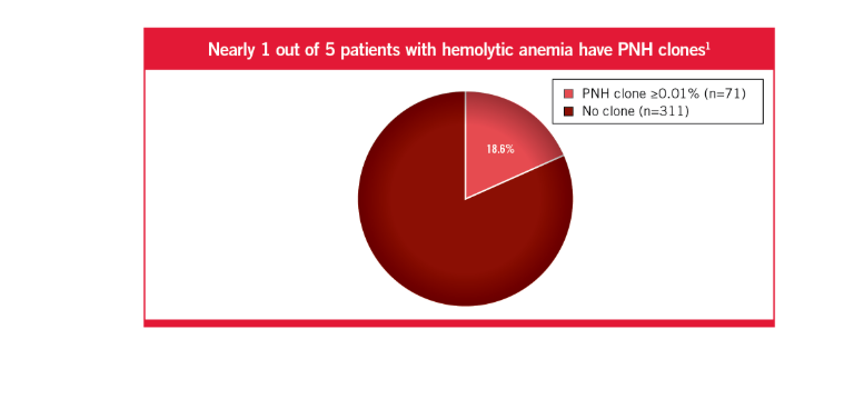 Nearly 1 out of 5 patients with hemolytic anemia have PNH clones1