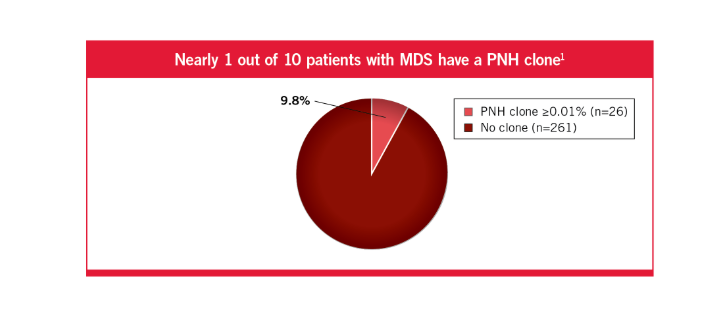 Approximately 1 out of 18 patients with MDS have PNH clones53
